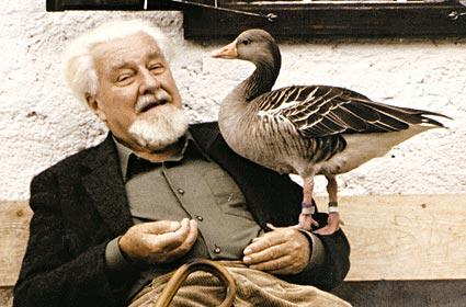 Konrad Lorenz, titulaire du prix Nobel de physiologie ou médecine